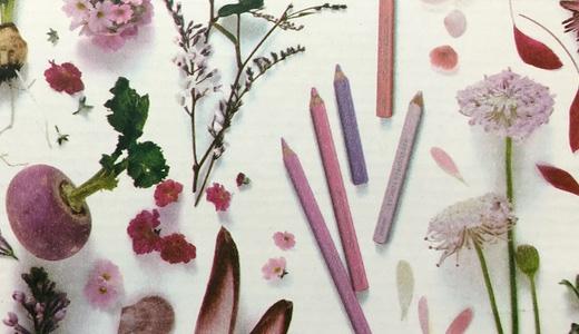 フェリシモ500色色鉛筆No.5。ついに色鉛筆が1本ずつ単品で買い足しできるようになった!